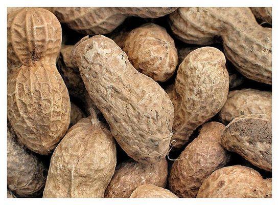 alles peanuts