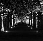 Alley in the Dark