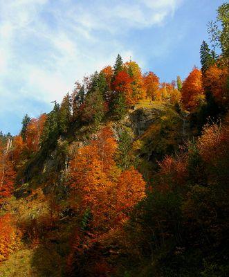 Allgäuer Herbst