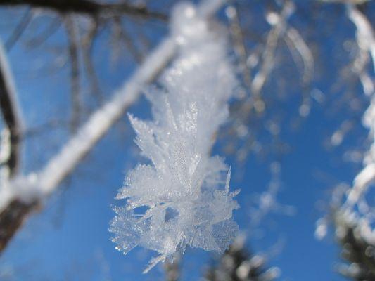 Allgäuer Winter Wonderland