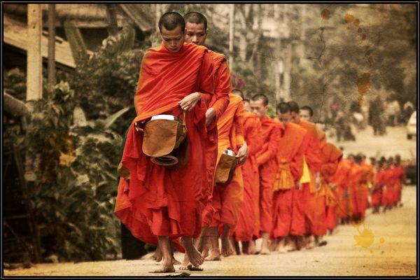 allmorgentliche Mönchskolonne in Luang Prabang, Laos
