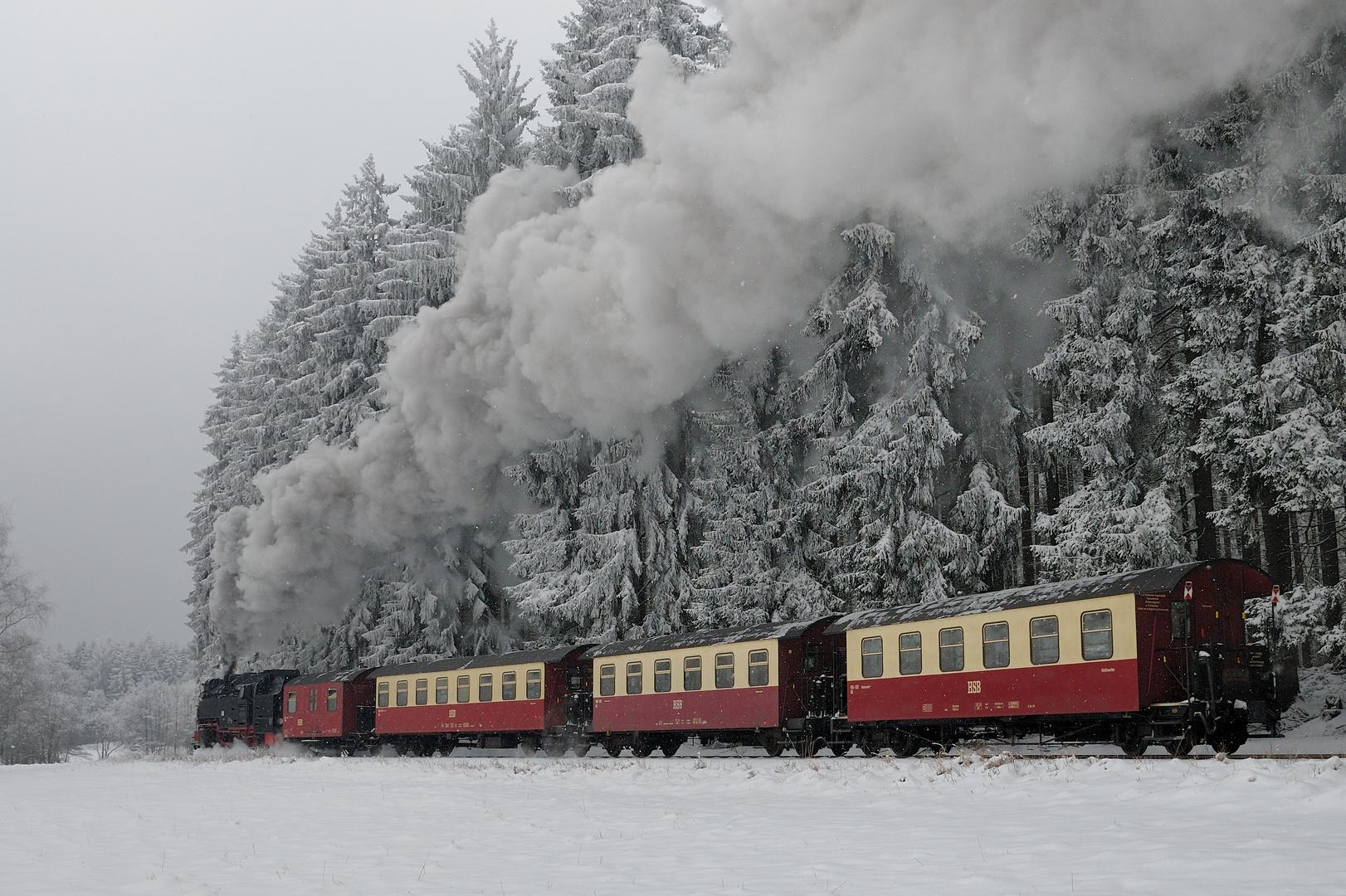 Alltäglicher Kampf mit dem Winter
