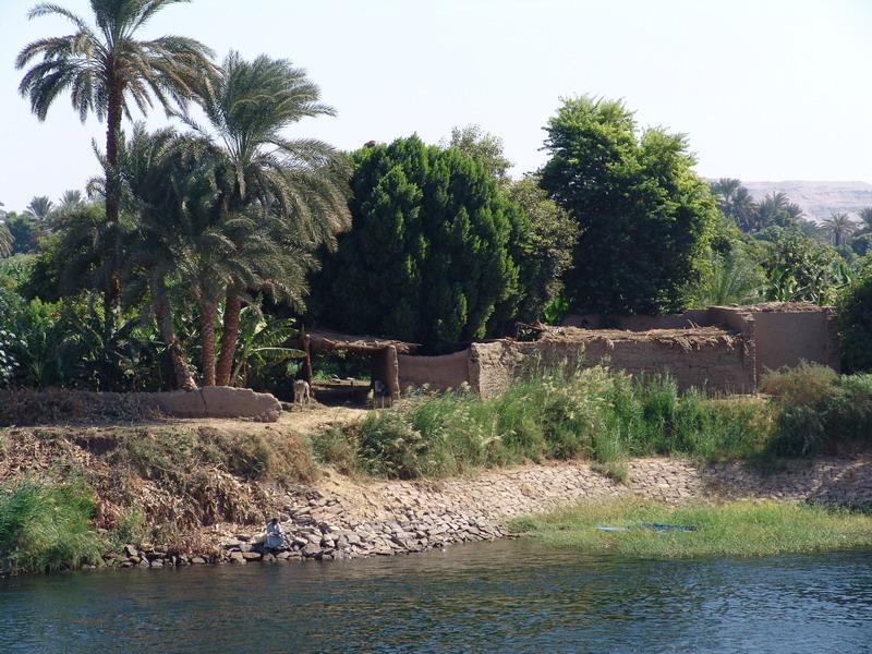 Alltag am Nil