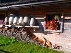 Almidyll im Karwendel