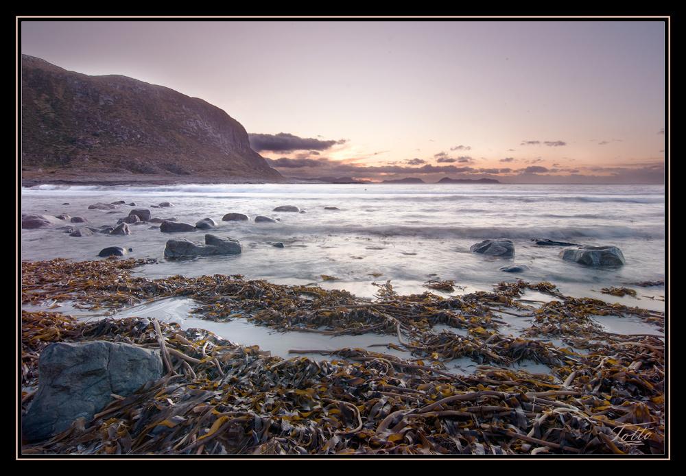 Alnes beach in sunset
