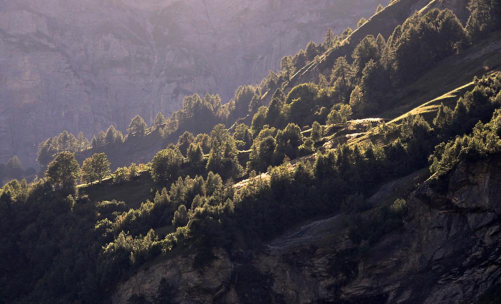 Alp im Abendlicht