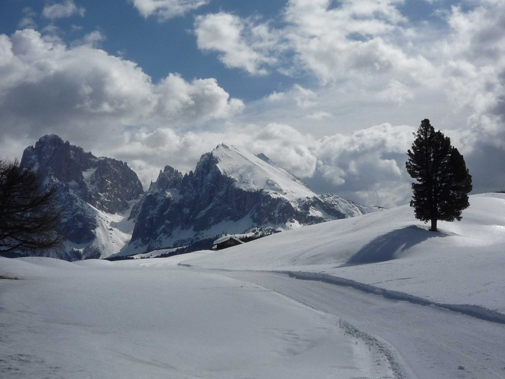 Alpe di Siusi 2