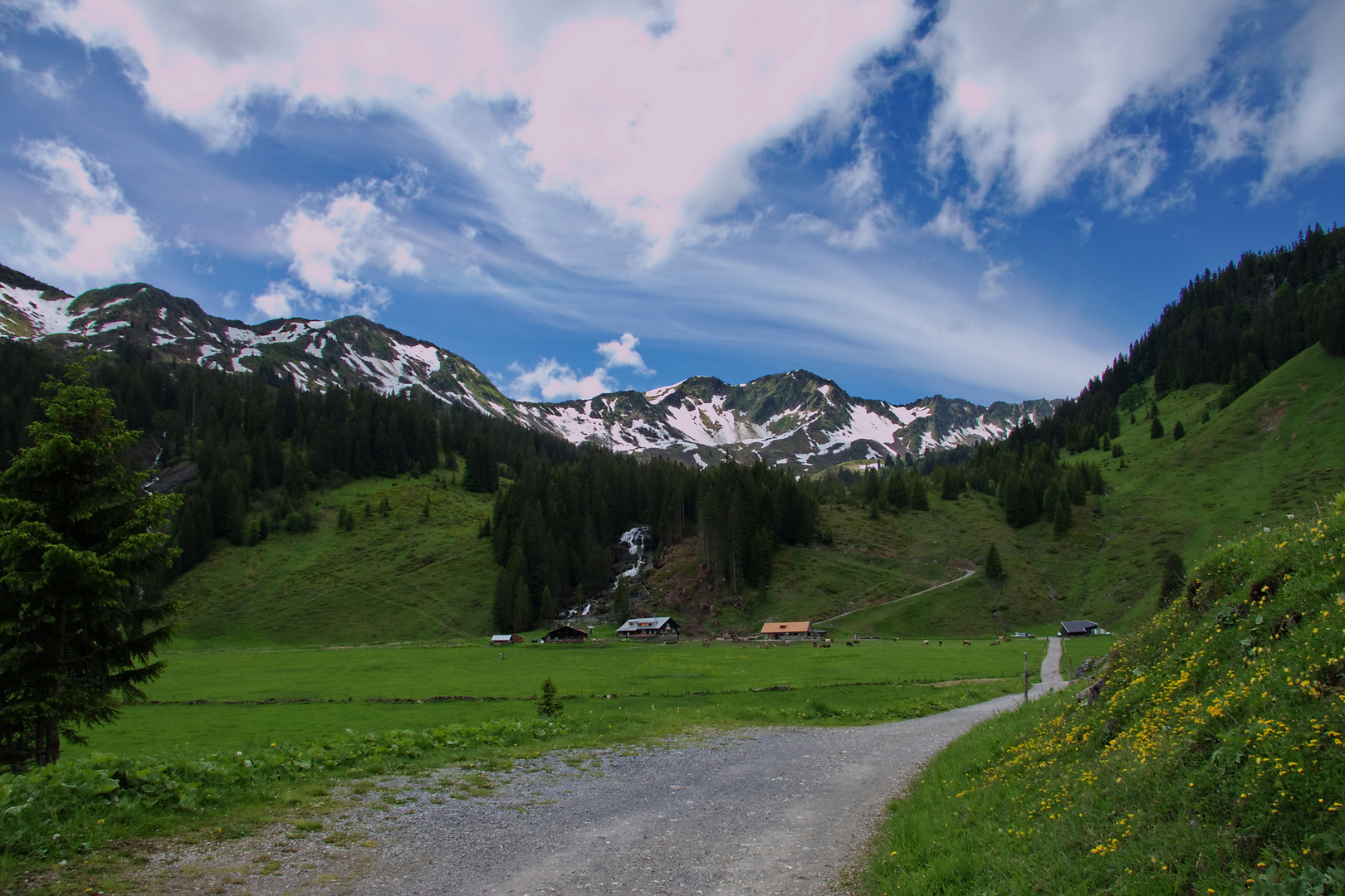 Alpe ~ Melköde