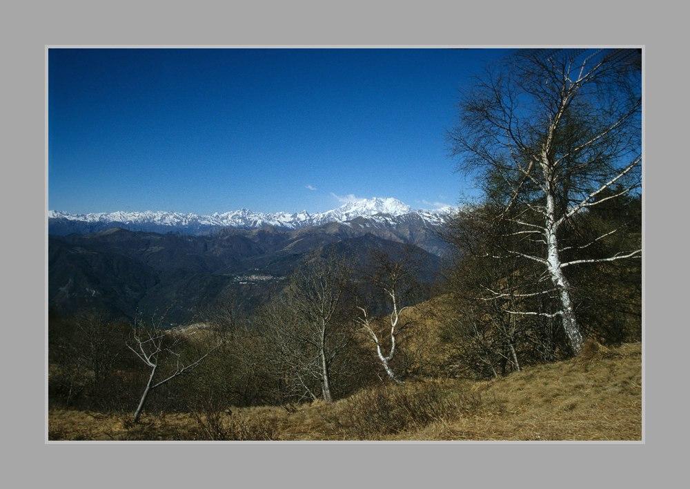 Alpen-Blick