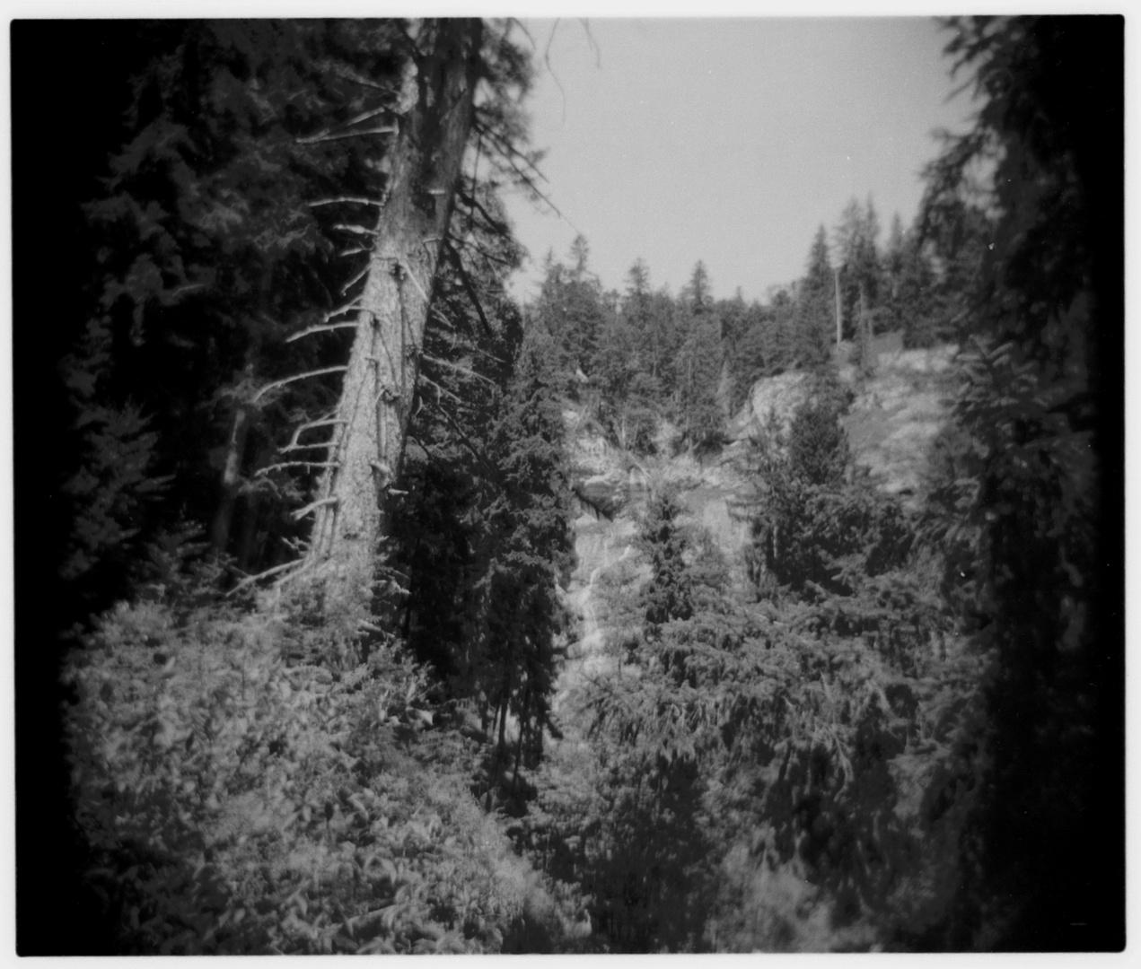 Alpen - Detailansicht
