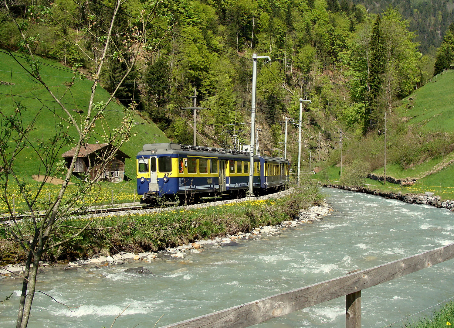 Alpes bernoises / Berner Alpen.01