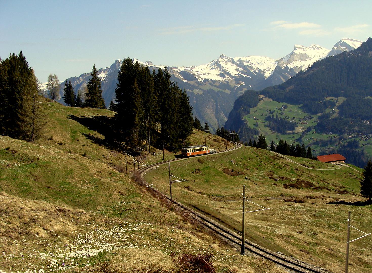 Alpes bernoises / Berner Alpen.02