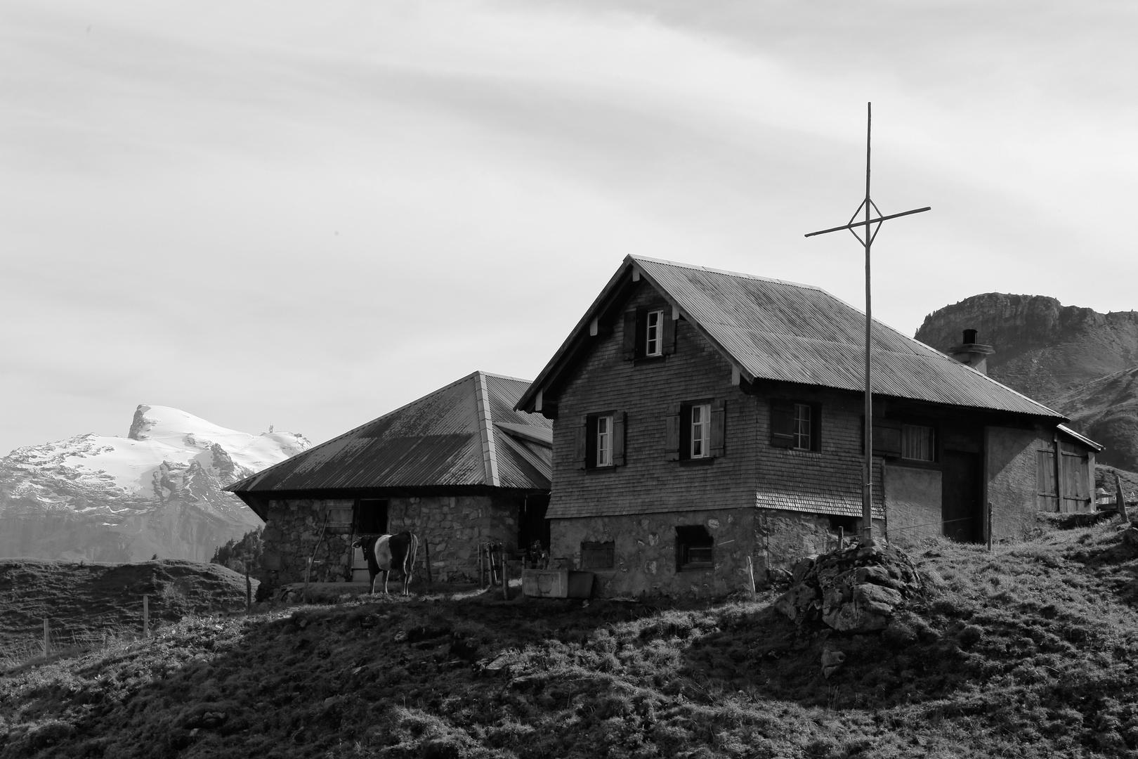 Alpgebäude der Schällefluehütte