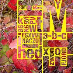 Alphabet im Herbst