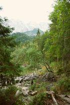 Alpsee (1)
