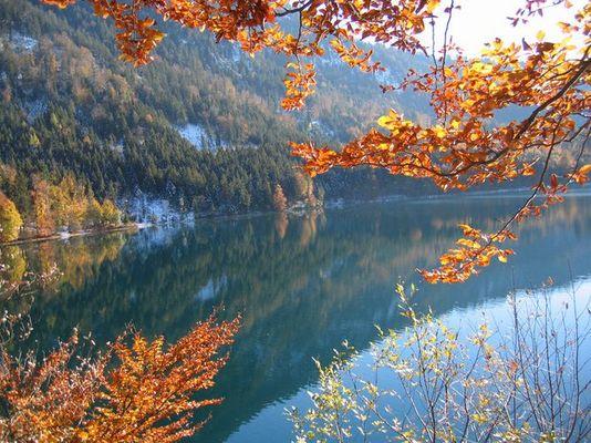 Alpsee Ende Oktober