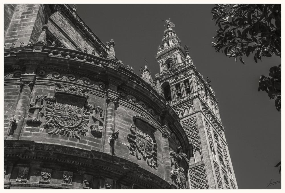 Alrededores de la Giralda (Sevilla Andalucía España)