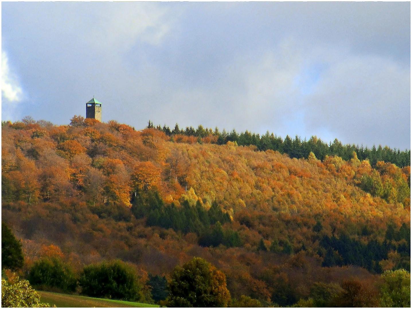 Als der Sollingturm noch bunte Wälder sah ...