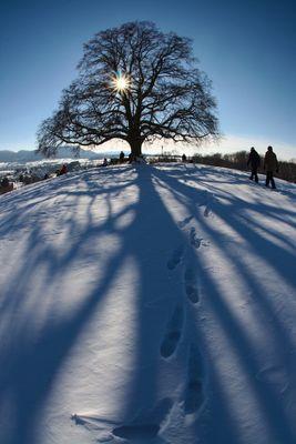 Als der Winter noch Winter war