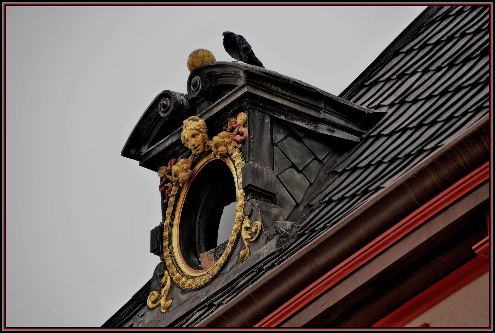 ... als die Taube auf dem Dach !