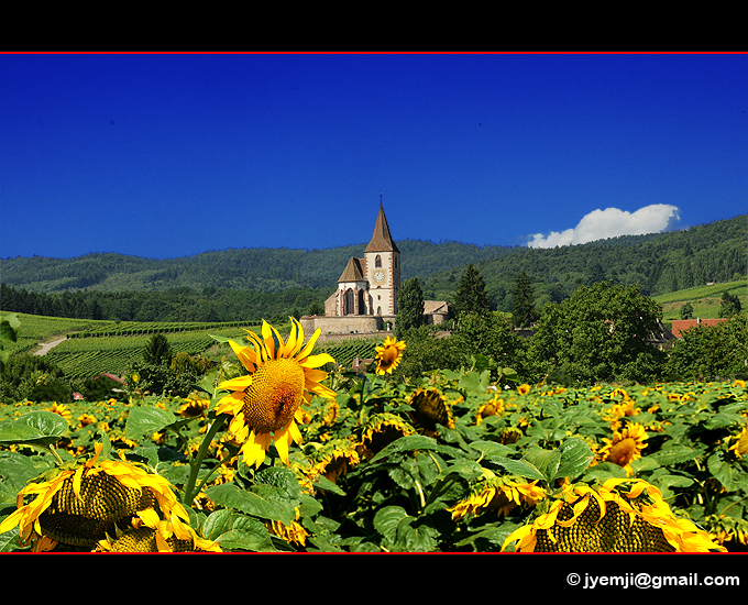 Alsace, Hunawihr
