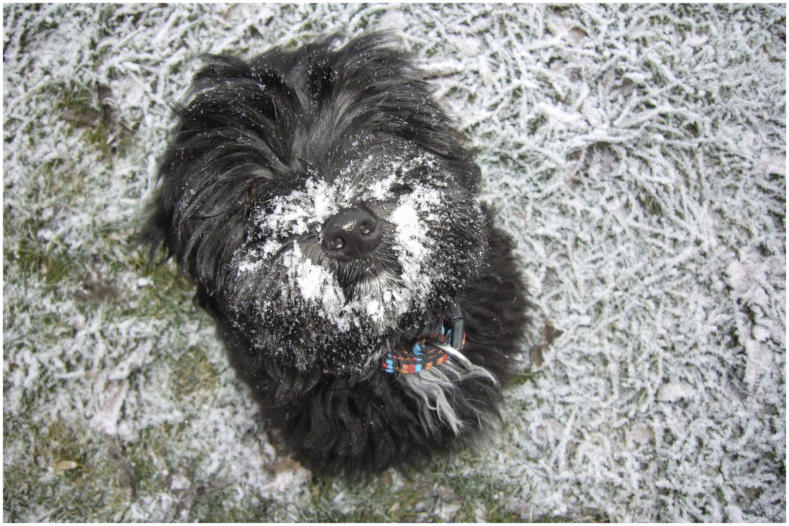 also ich finde kälte und schnee gut !