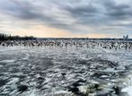 alster on ice