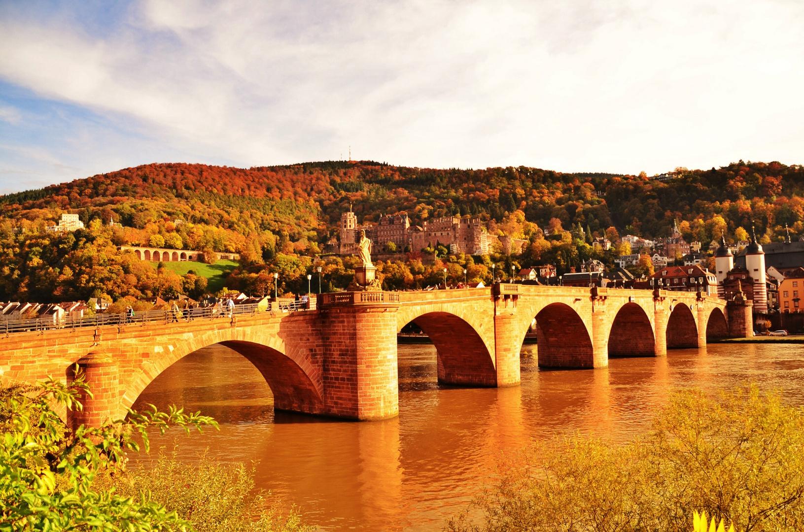 Alt Heidelberg du Feine...