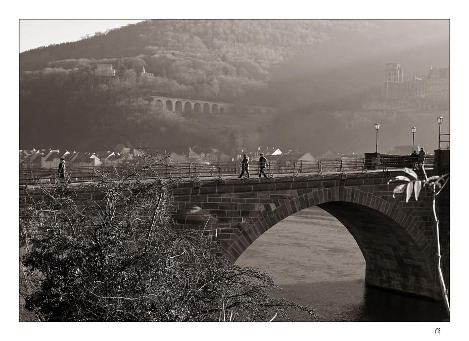 Alt Heidelberg, du Feine