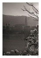 Alt Heidelberg, du Feine II