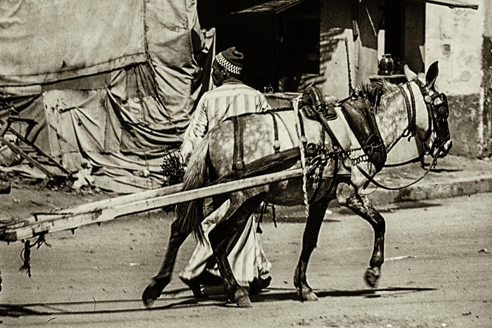 Alt-Kairo 1978