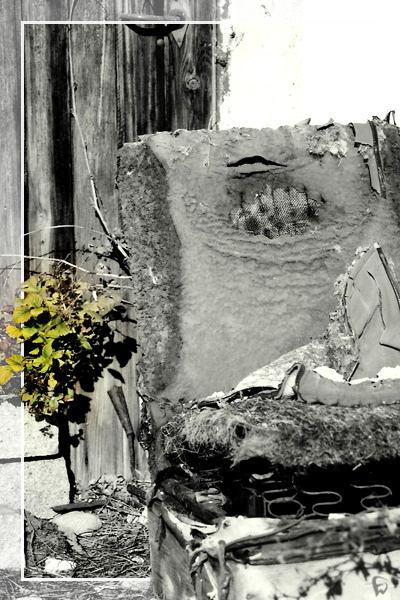 Alt und Neu - Tod und Leben