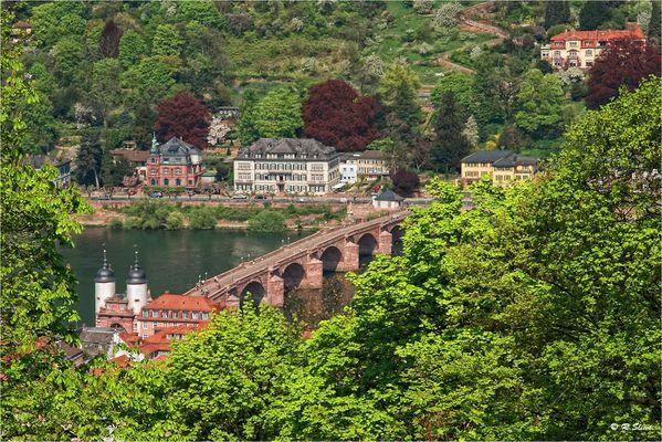 Alte Brücke (Heidelberg)