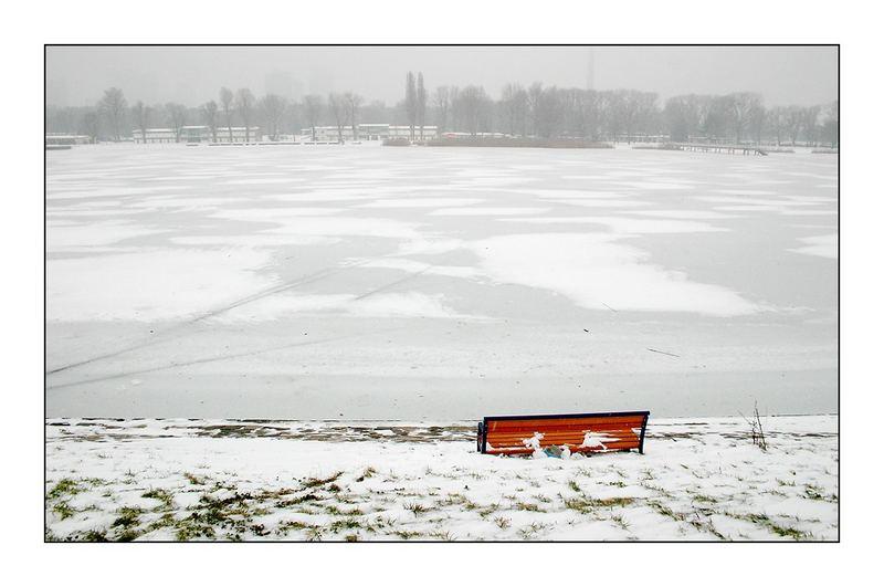Alte Donau, neues Jahr #1