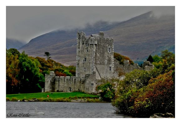 Alte Mauern.... (Ross Castle am Lough Leane , Irland ) bearbeitet
