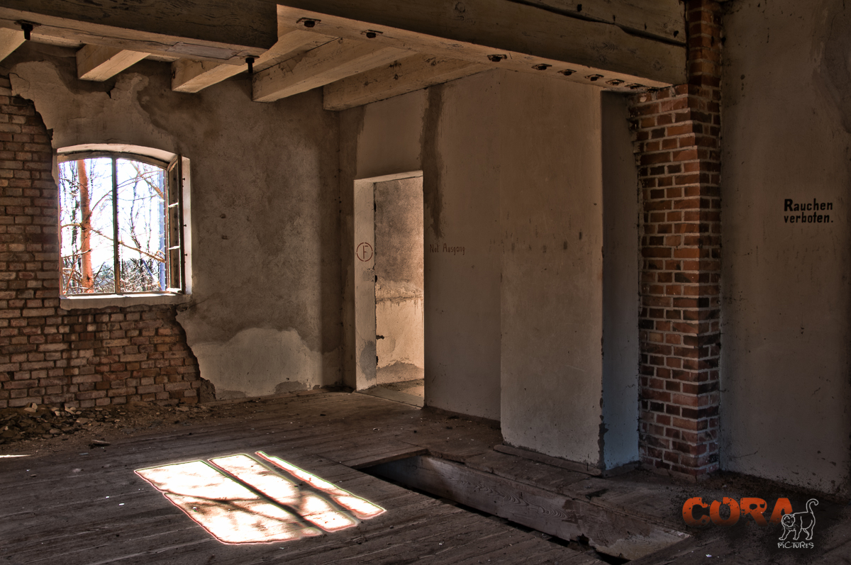 Alte Mühle 5