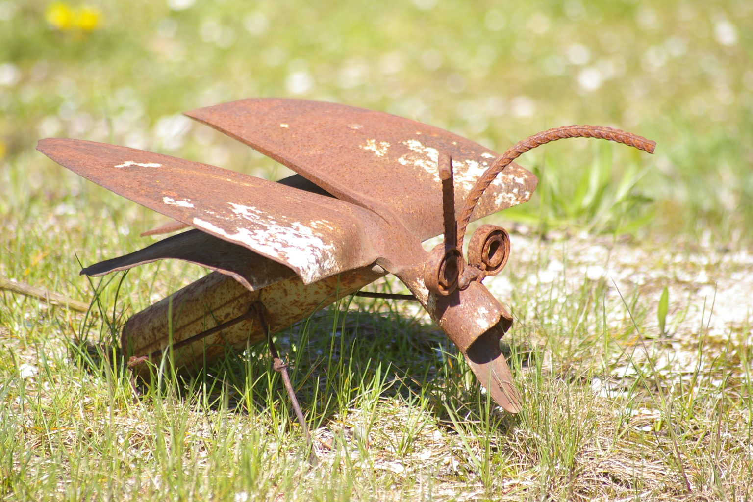 Alte Schaufel als Käfer