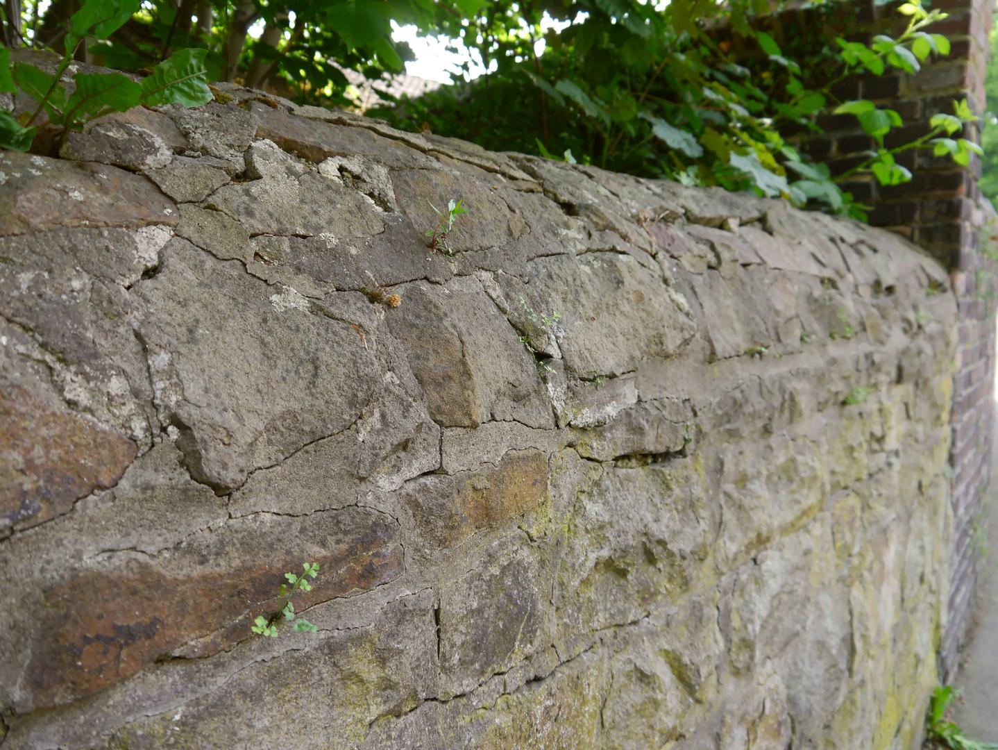 alte Schürener Stadtmauer