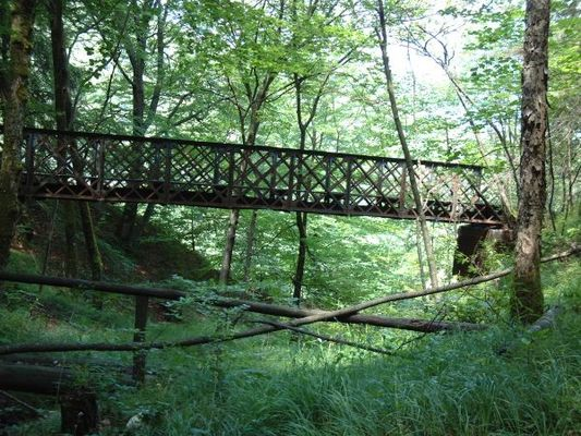 Alte Soleleitungs Brücke im Gebirge