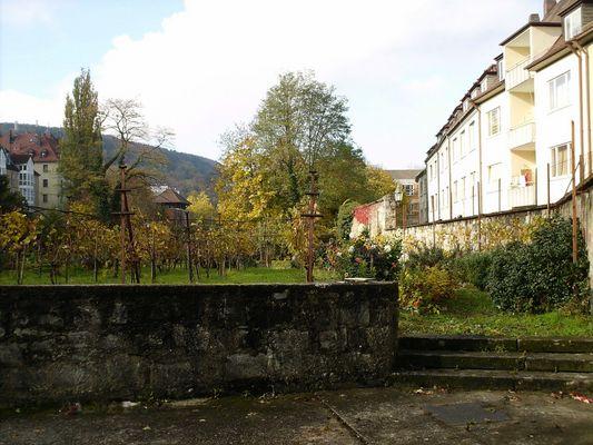 Alte Stadt,alte Mauern,alter Wein!