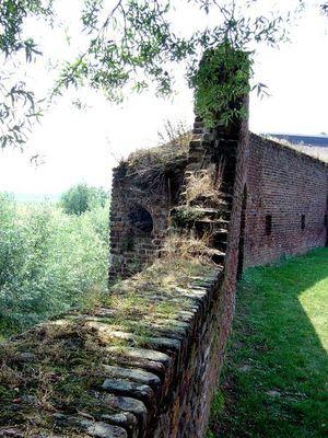 Alte Stadtmauer in Zons