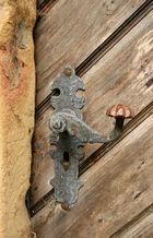 Alte Tür auf Schloß Ehrenberg