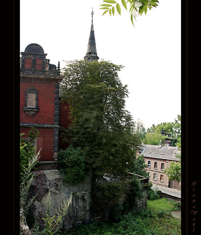 Alte Villa 2