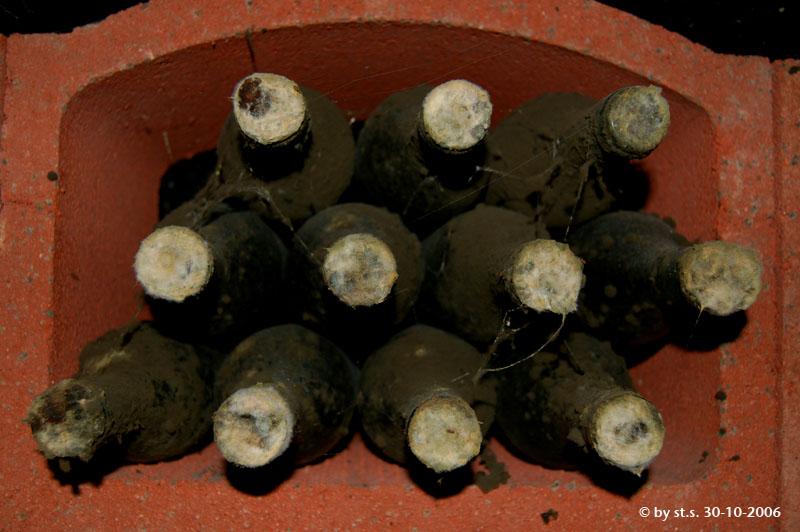 Alte Weinflaschen im Weinkeller
