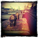 alter Deutzer Hafen 3...