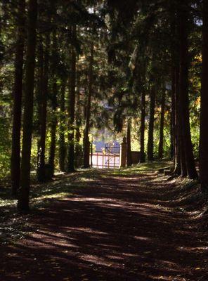 alter Friedhof in Herrstein/Hunsrück oder letzte Aussicht
