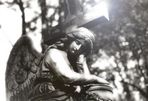Alter Friedhof Offenbach/Main II