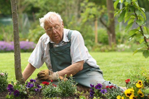 alter Mann im Garten