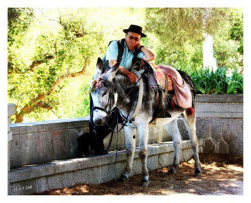 Alter Mann mit Esel