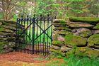 alter Pest-Friedhof im Wald in Norwegen